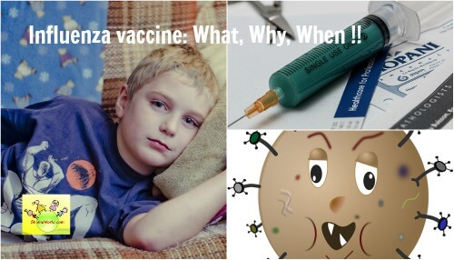 Flu Vaccine / Influenza Vaccine: What, Why and When