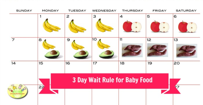 3 day wait rule for baby food