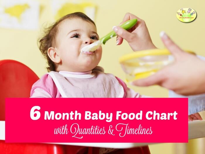 6 month baby food chart/ meal plan