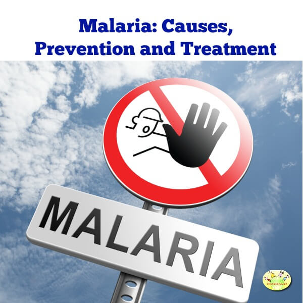 Malaria: Causes, Prevention and Treatment