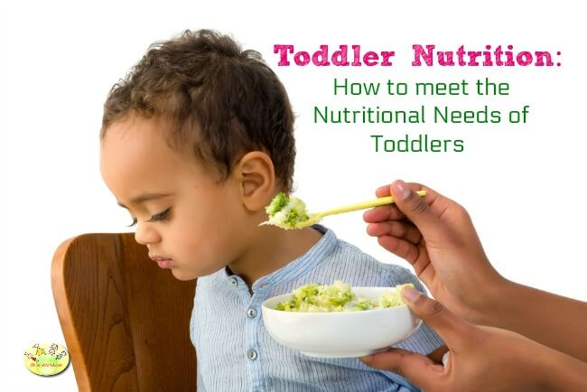 How to meet nutrition needs of toddlers