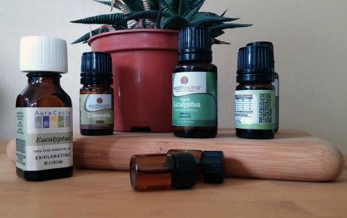 eucalyptus oil-2
