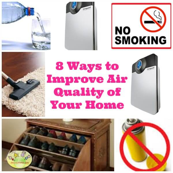 Improving Air Quality In Home 28 Images Best Plants For Indoor Quality 3 Ways