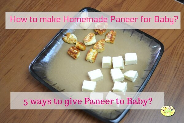 How To Give Cheese Paneer Cottage Cheese To Baby 5 Paneer Recipes For Babies