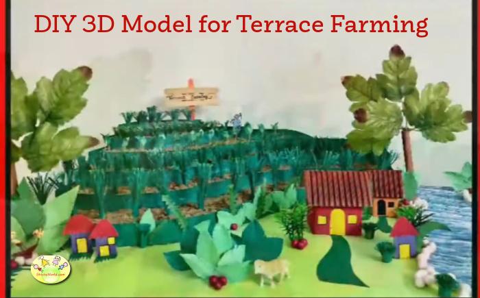 DIY model for Terrace Farming